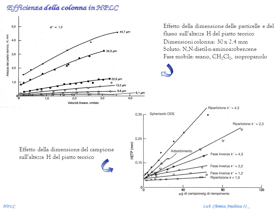Efficienza della colonna in HPLC