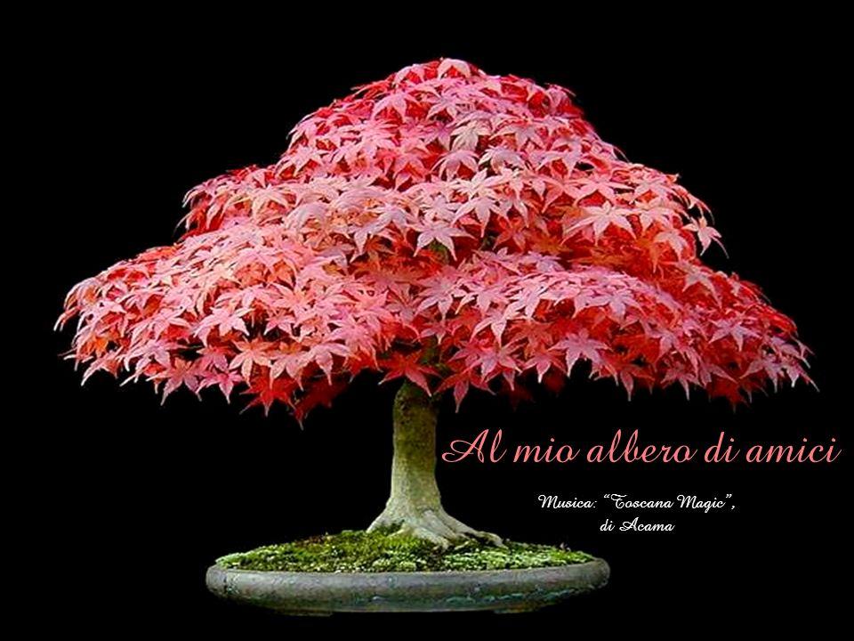 Al mio albero di amici Musica: Toscana Magic , di Acama