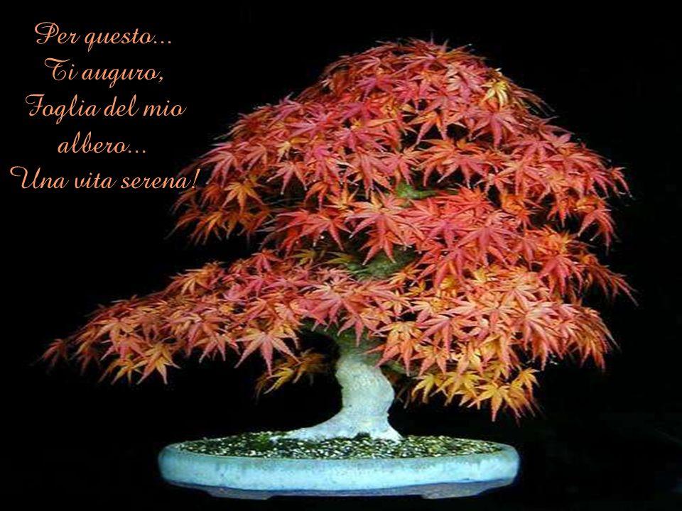 Per questo... Ti auguro, Foglia del mio albero... Una vita serena!