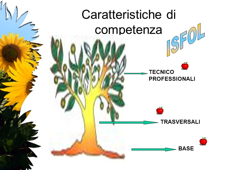 Caratteristiche di competenza