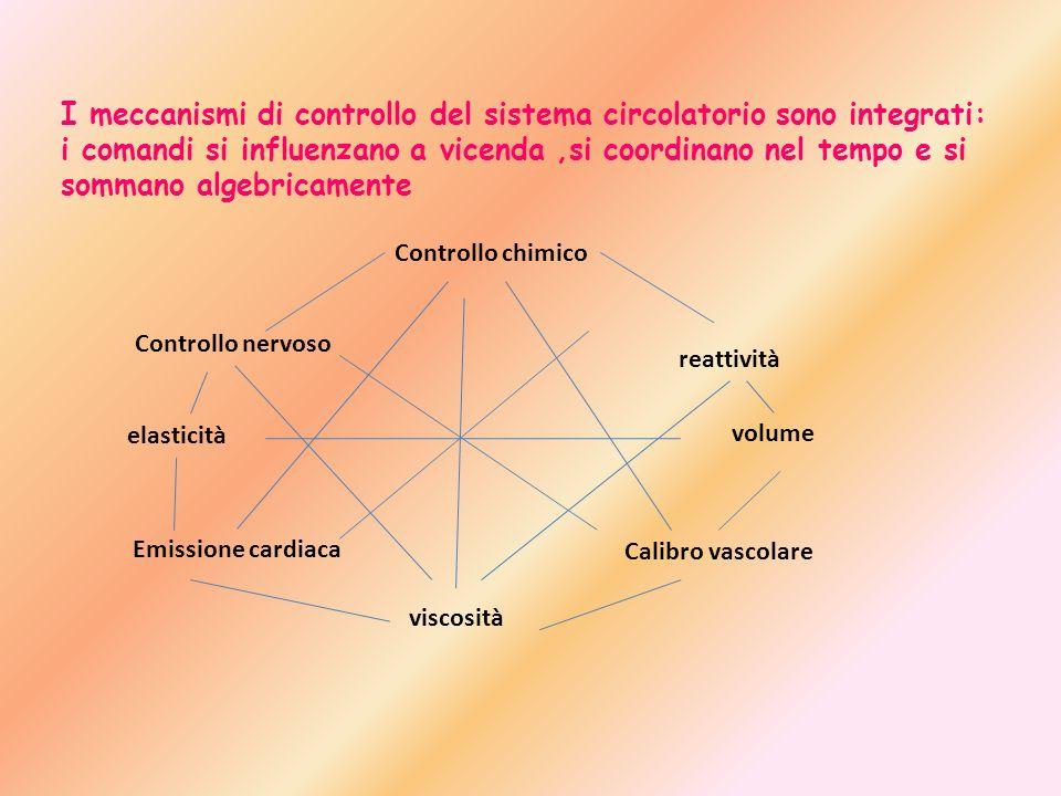 I meccanismi di controllo del sistema circolatorio sono integrati: