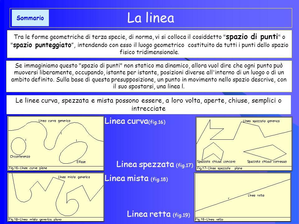 La linea Linea curva(fig.16) Linea spezzata (fig.17)
