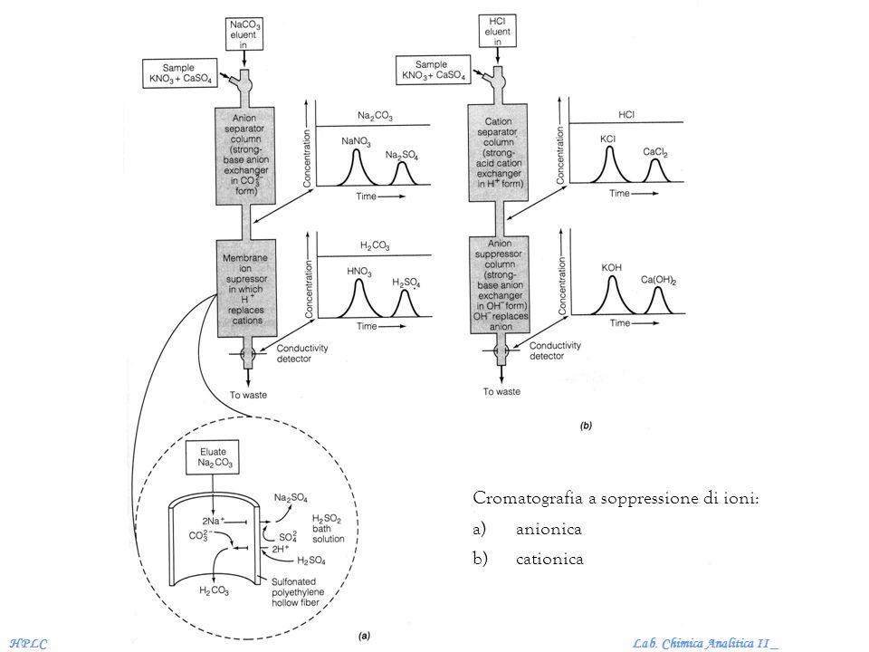 Cromatografia a soppressione di ioni: anionica cationica