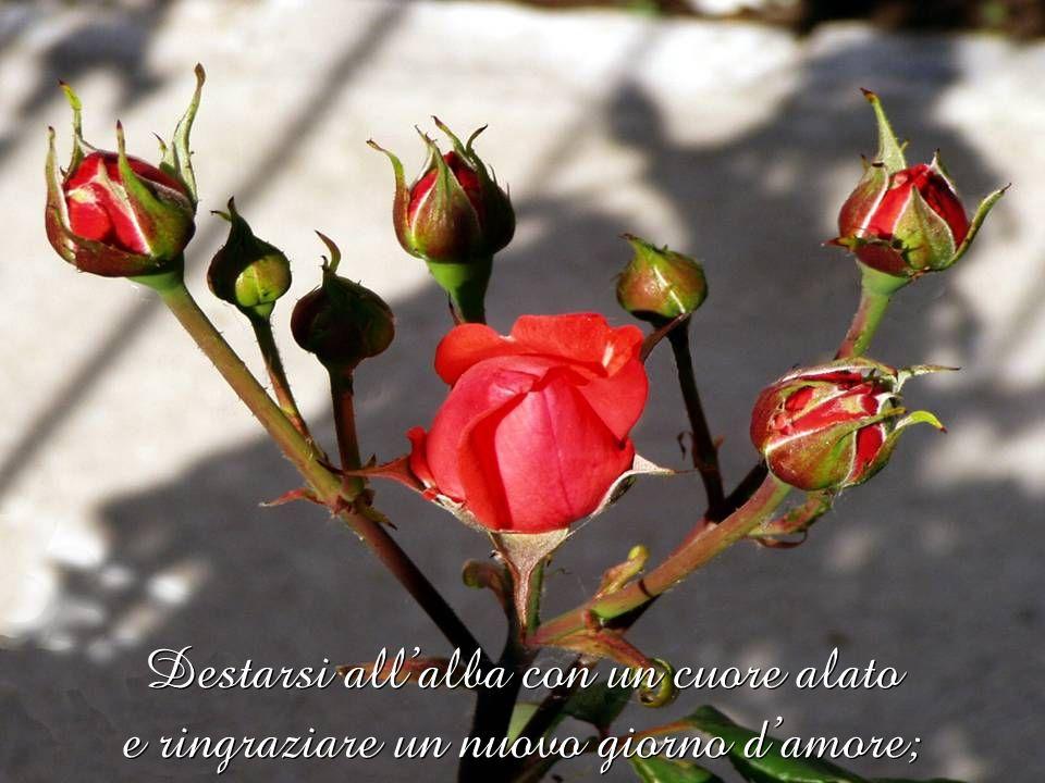 Destarsi all'alba con un cuore alato e ringraziare un nuovo giorno d'amore;