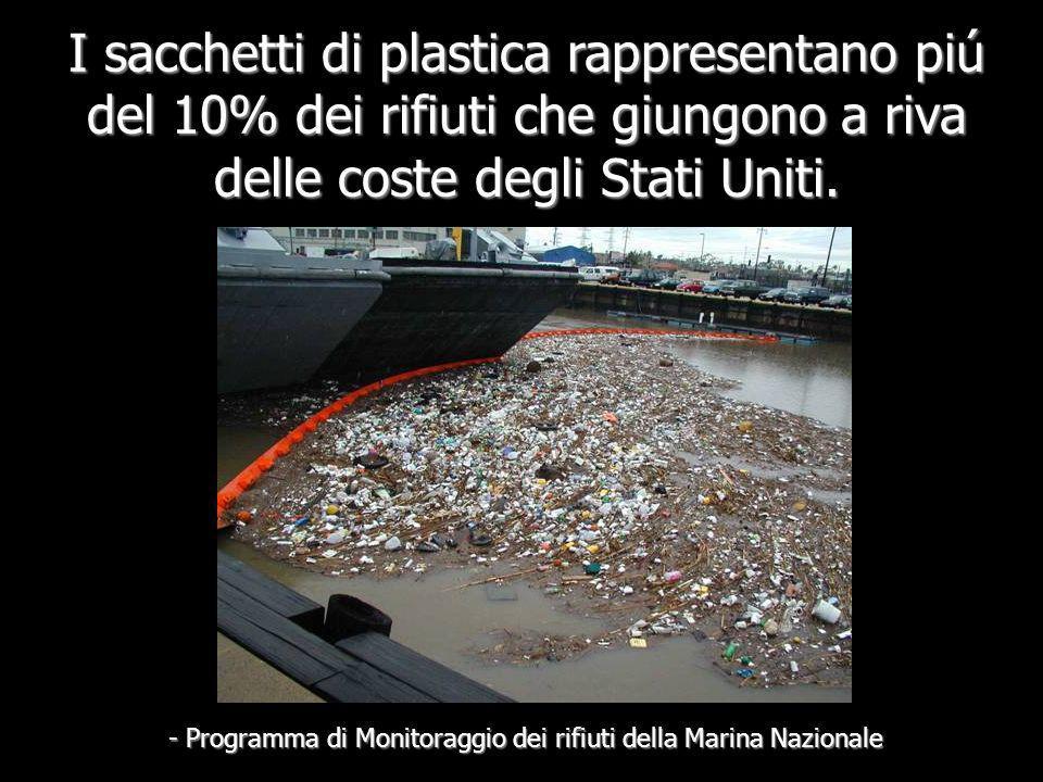 - Programma di Monitoraggio dei rifiuti della Marina Nazionale