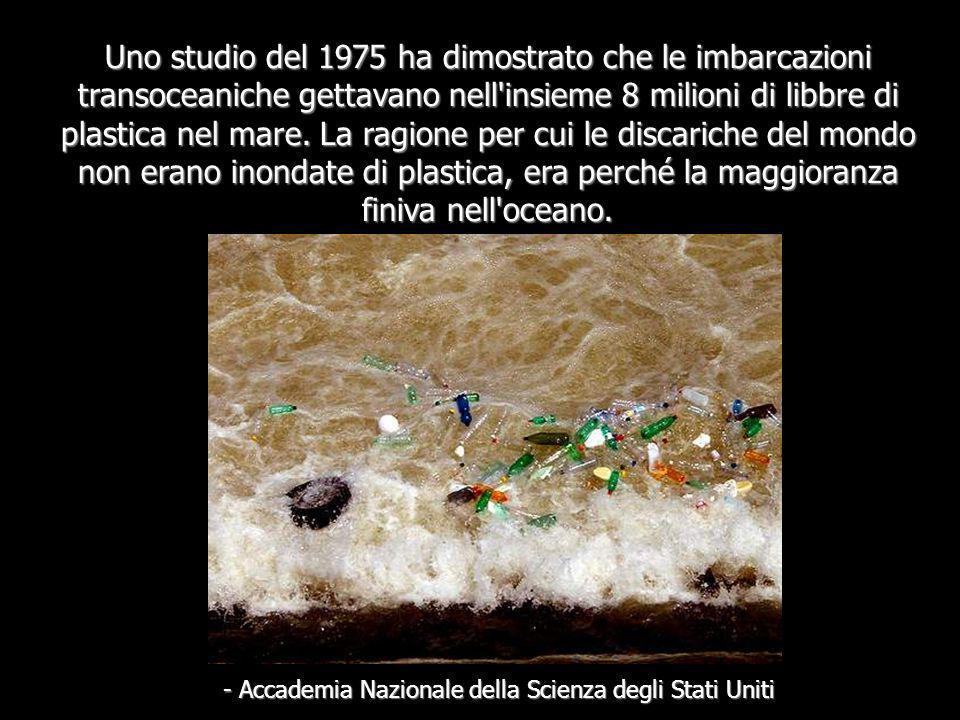 - Accademia Nazionale della Scienza degli Stati Uniti