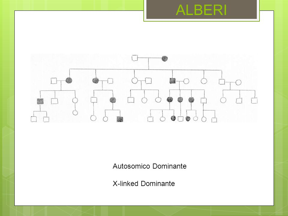 ALBERI Autosomico Dominante X-linked Dominante