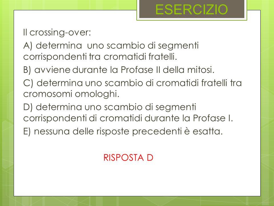 ESERCIZIO Il crossing-over: