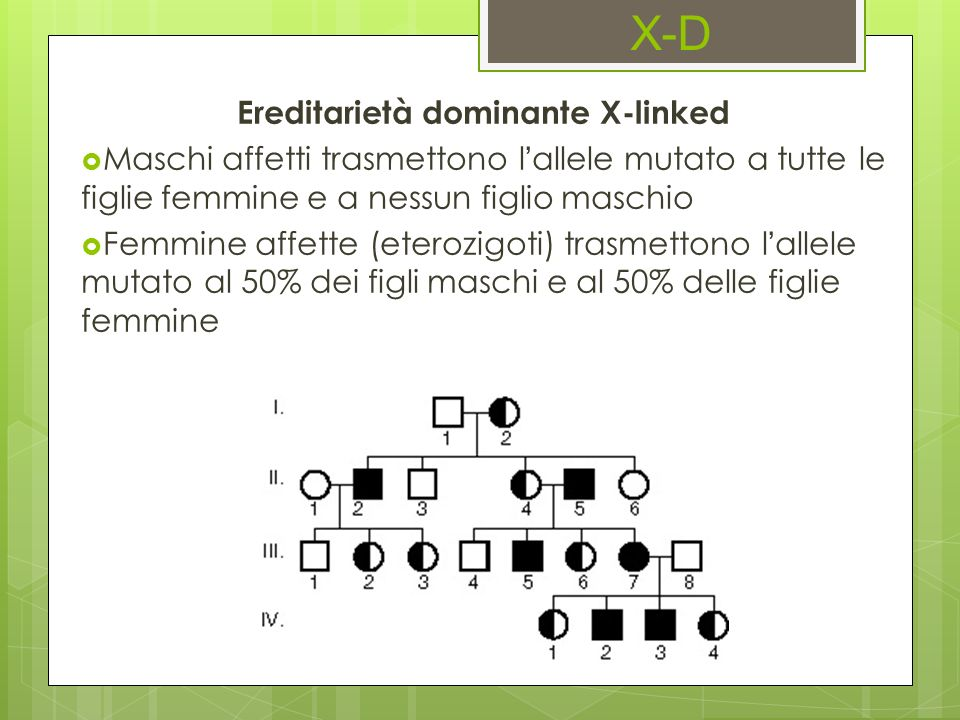 Ereditarietà dominante X-linked