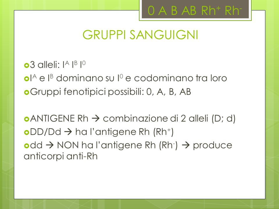 0 A B AB Rh+ Rh- GRUPPI SANGUIGNI 3 alleli: IA IB I0