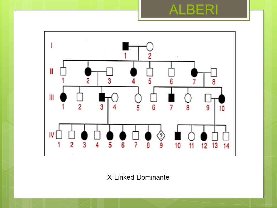 ALBERI X-Linked Dominante
