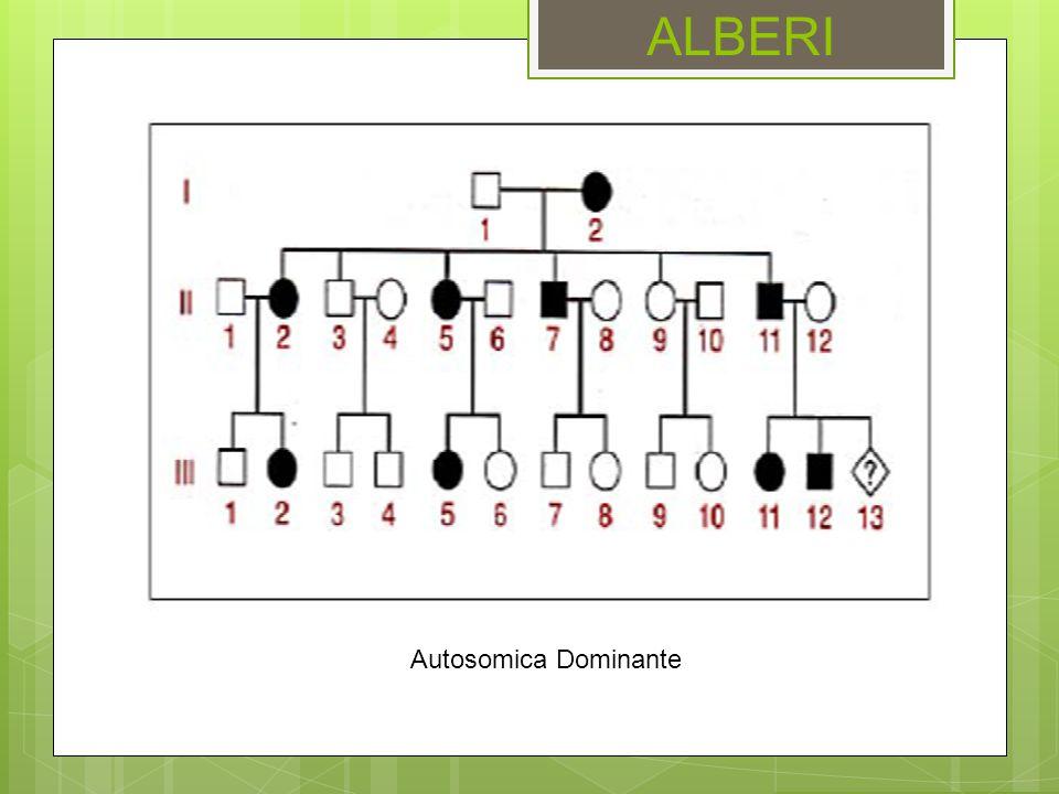 ALBERI Autosomica Dominante