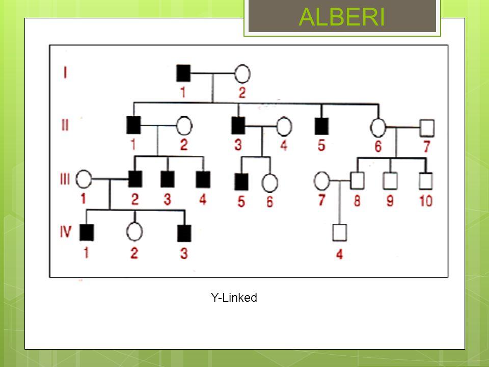 ALBERI Y-Linked