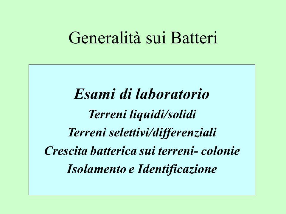 Generalità sui Batteri