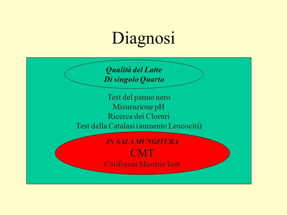 Diagnosi CMT Qualità del Latte Di singolo Quarto Test del panno nero