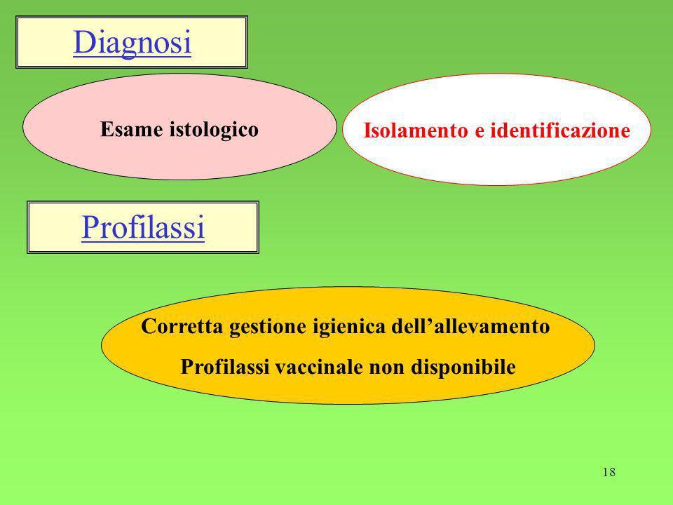 Diagnosi Profilassi Esame istologico Isolamento e identificazione