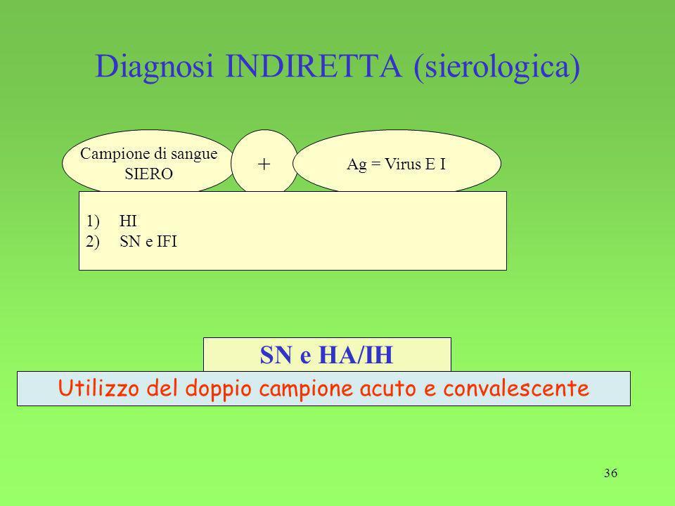 Diagnosi INDIRETTA (sierologica)