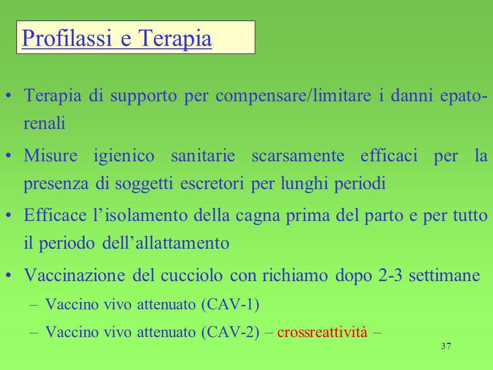 Profilassi e Terapia Terapia di supporto per compensare/limitare i danni epato-renali.