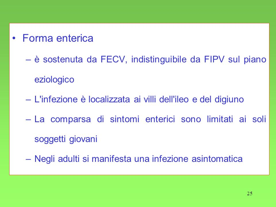 Forma enterica è sostenuta da FECV, indistinguibile da FIPV sul piano eziologico. L infezione è localizzata ai villi dell ileo e del digiuno.