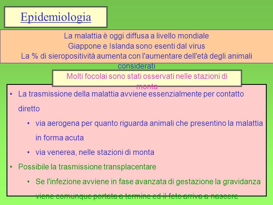 Epidemiologia La malattia è oggi diffusa a livello mondiale