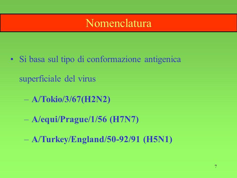 Nomenclatura Si basa sul tipo di conformazione antigenica superficiale del virus. A/Tokio/3/67(H2N2)