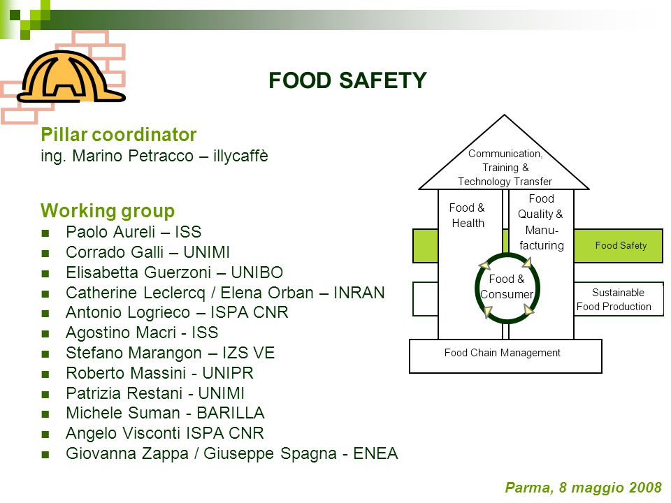 FOOD SAFETY Pillar coordinator Working group