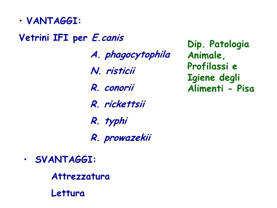 VANTAGGI: Vetrini IFI per E.canis. A. phagocytophila. N. risticii. R. conorii. R. rickettsii. R. typhi.