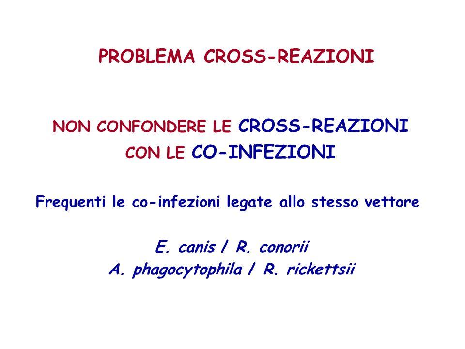 PROBLEMA CROSS-REAZIONI