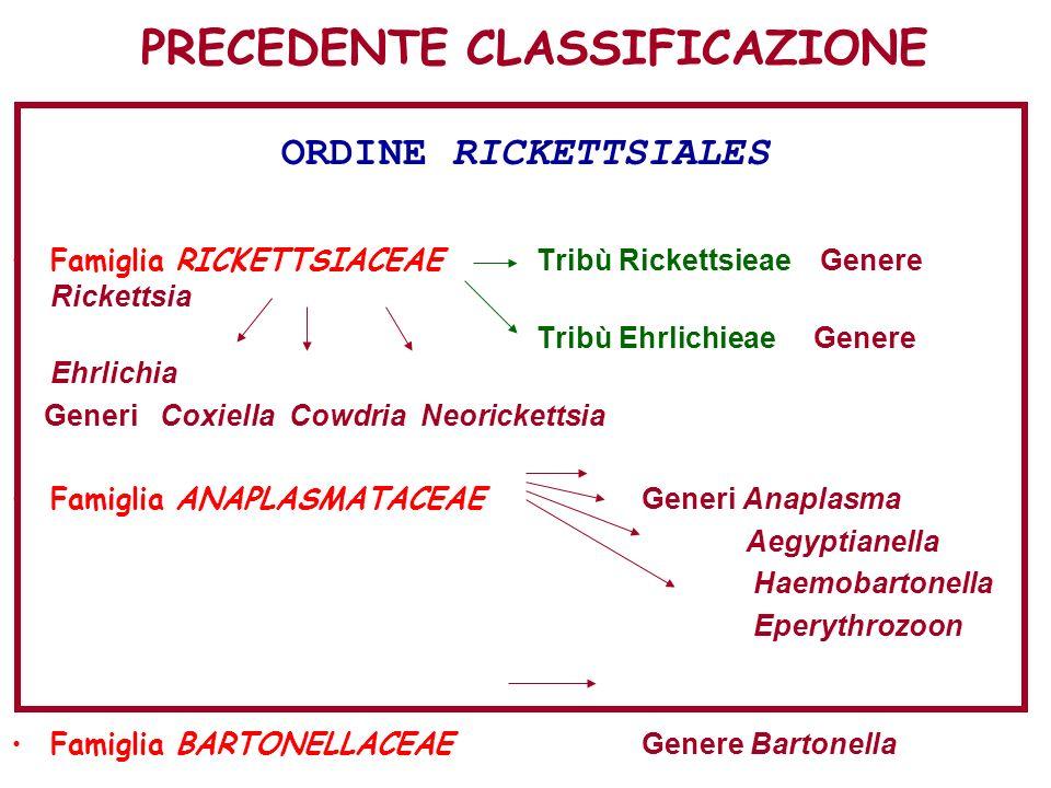 PRECEDENTE CLASSIFICAZIONE