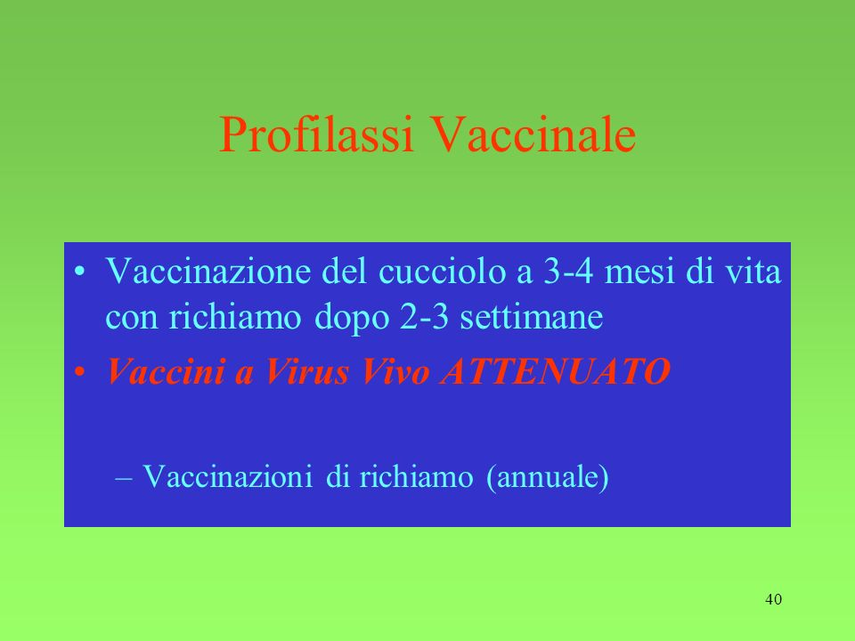 Profilassi VaccinaleVaccinazione del cucciolo a 3-4 mesi di vita con richiamo dopo 2-3 settimane. Vaccini a Virus Vivo ATTENUATO.