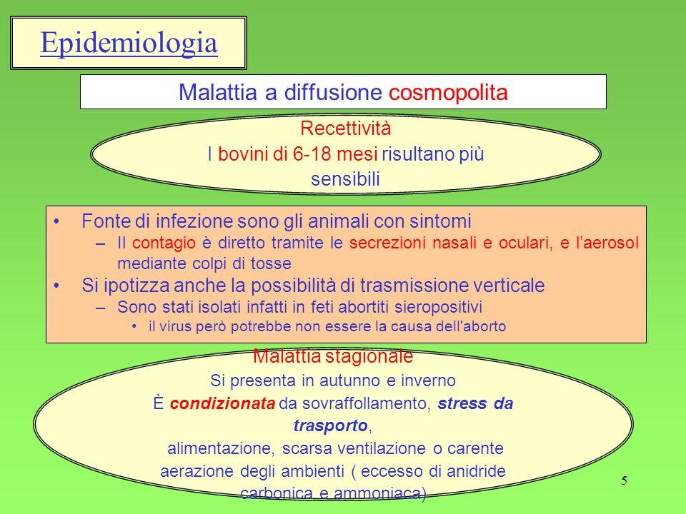 Malattia a diffusione cosmopolita