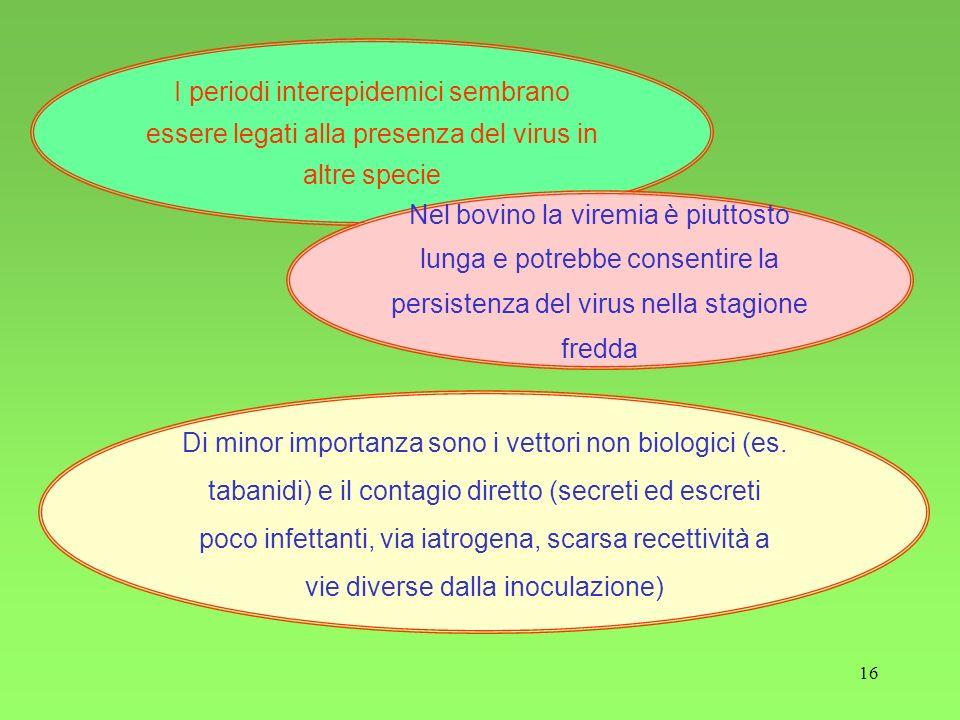 I periodi interepidemici sembrano essere legati alla presenza del virus in altre specie