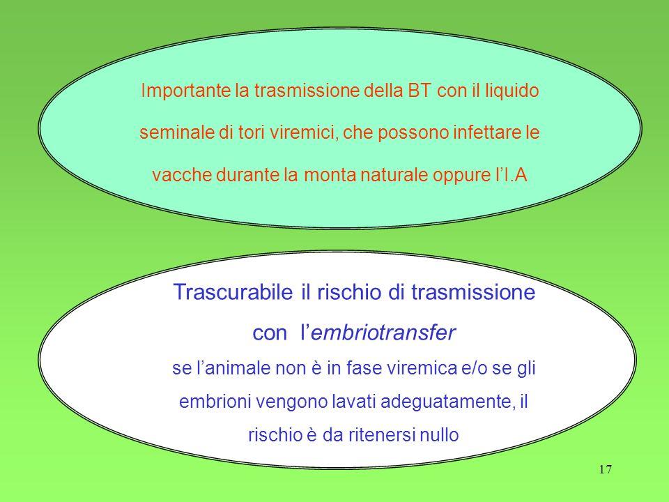 Trascurabile il rischio di trasmissione con l'embriotransfer