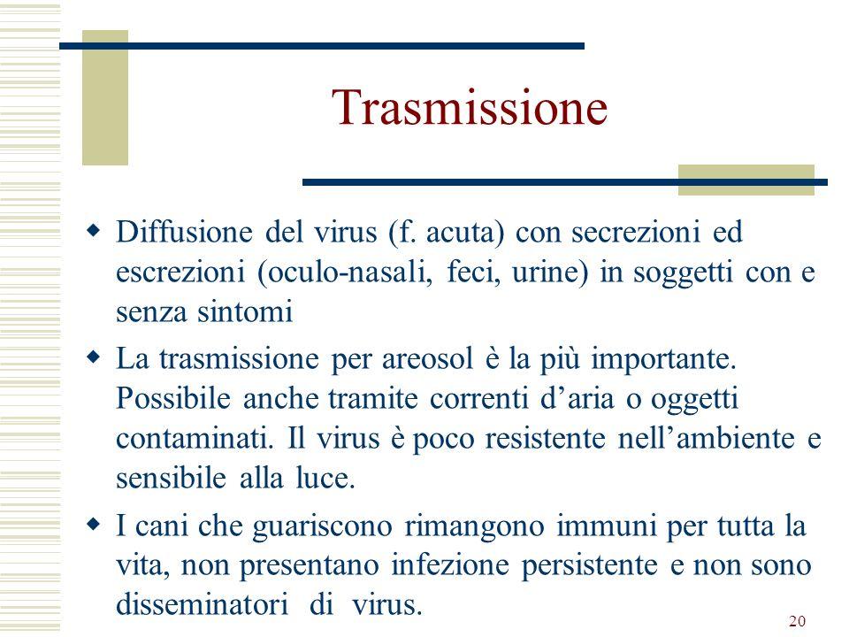 Trasmissione Diffusione del virus (f. acuta) con secrezioni ed escrezioni (oculo-nasali, feci, urine) in soggetti con e senza sintomi.