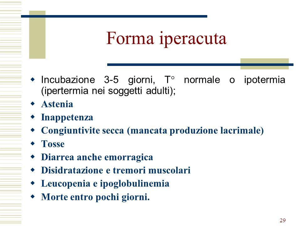 Forma iperacuta Incubazione 3-5 giorni, T° normale o ipotermia (ipertermia nei soggetti adulti); Astenia.