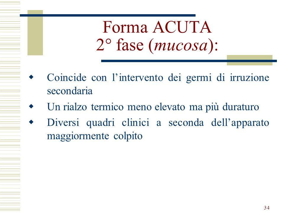 Forma ACUTA 2° fase (mucosa):