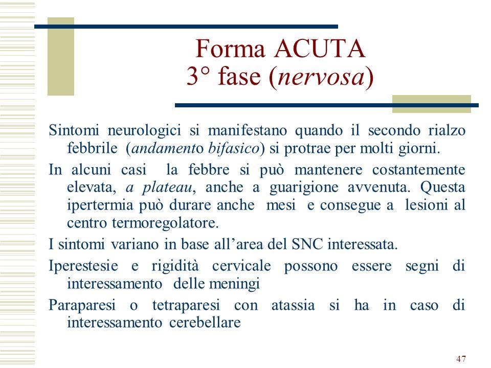 Forma ACUTA 3° fase (nervosa)