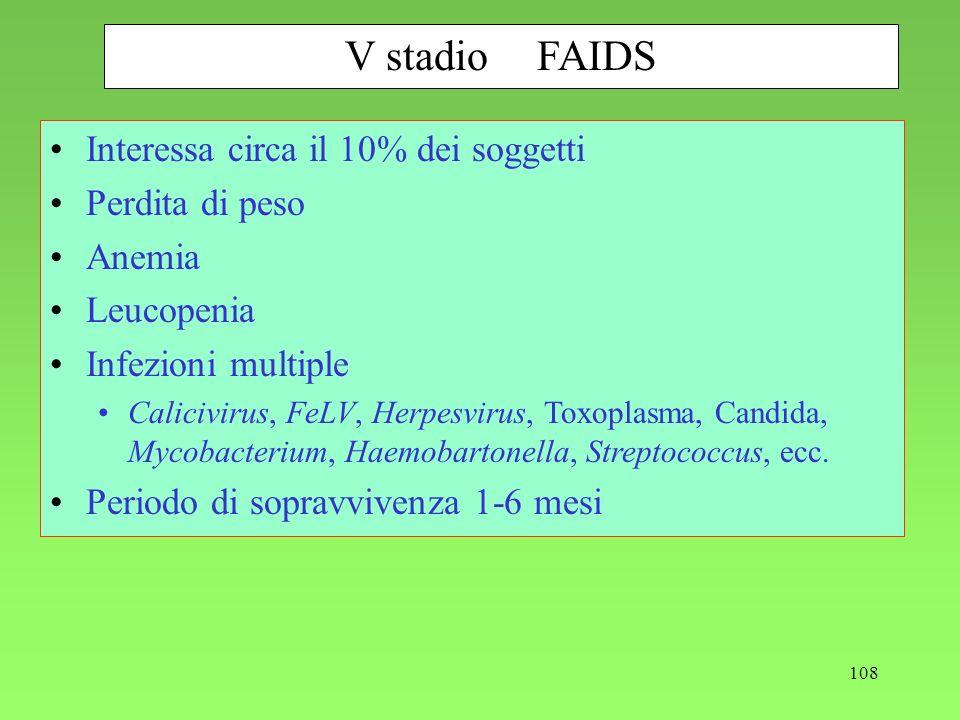 V stadio FAIDS Interessa circa il 10% dei soggetti Perdita di peso