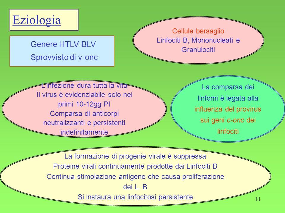 Eziologia Genere HTLV-BLV Sprovvisto di v-onc Cellule bersaglio