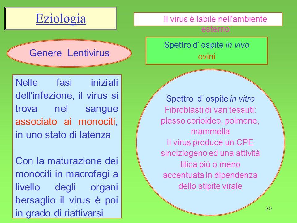 Eziologia Genere Lentivirus