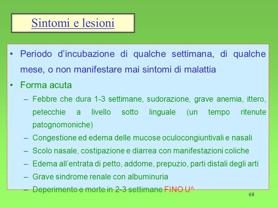 Sintomi e lesioni Periodo d'incubazione di qualche settimana, di qualche mese, o non manifestare mai sintomi di malattia.