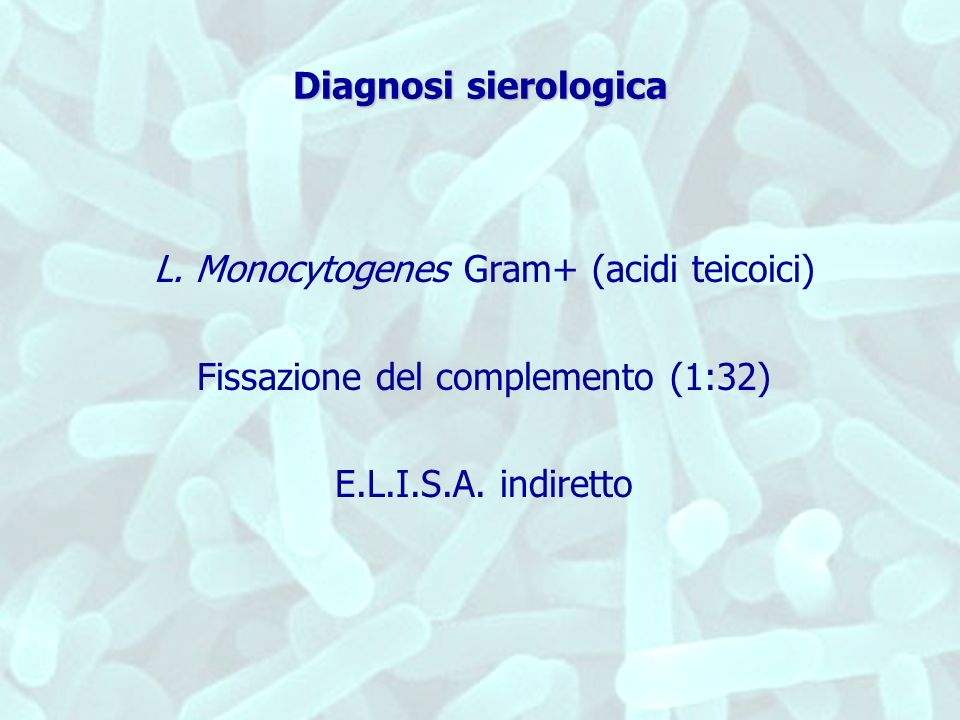 L. Monocytogenes Gram+ (acidi teicoici)