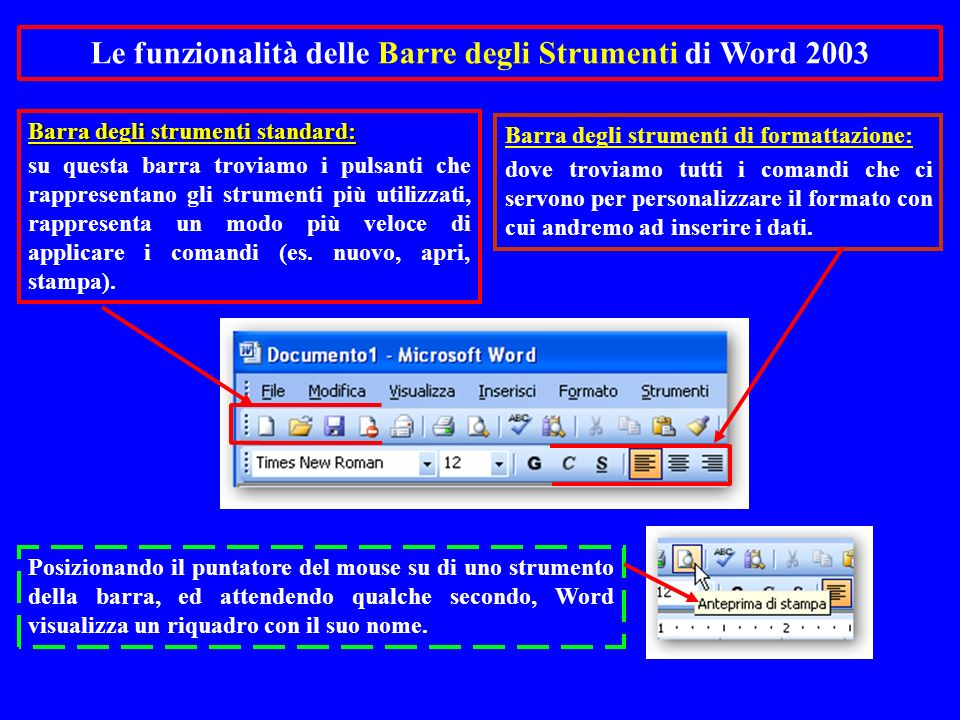 Le funzionalità delle Barre degli Strumenti di Word 2003