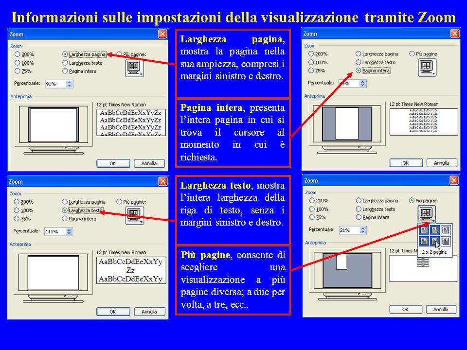 Informazioni sulle impostazioni della visualizzazione tramite Zoom
