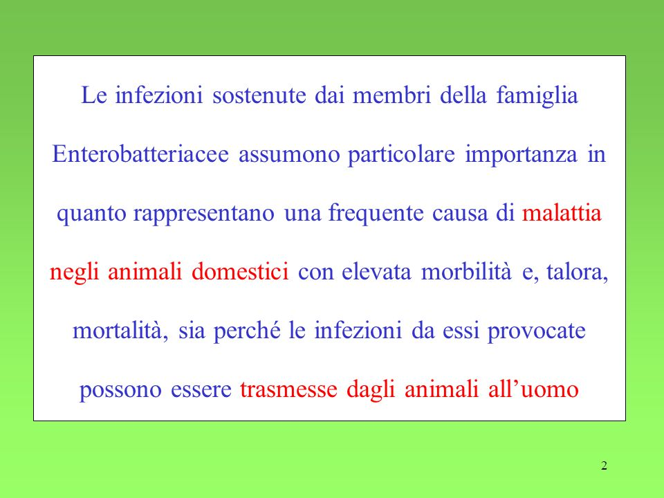 Le infezioni sostenute dai membri della famiglia Enterobatteriacee assumono particolare importanza in quanto rappresentano una frequente causa di malattia negli animali domestici con elevata morbilità e, talora, mortalità, sia perché le infezioni da essi provocate possono essere trasmesse dagli animali all'uomo
