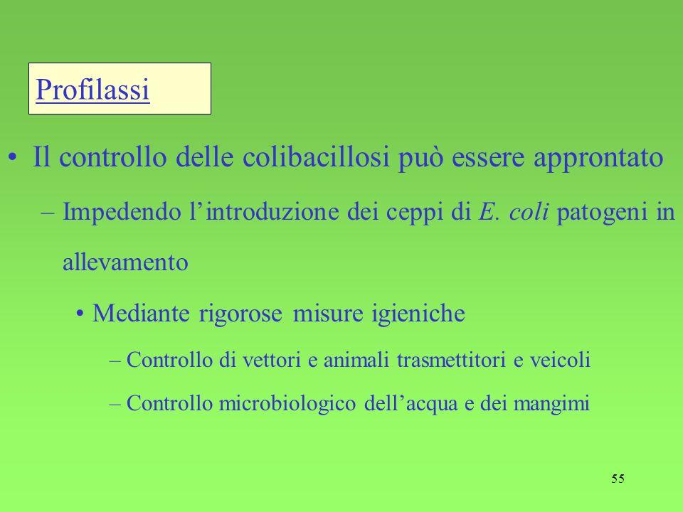 Il controllo delle colibacillosi può essere approntato