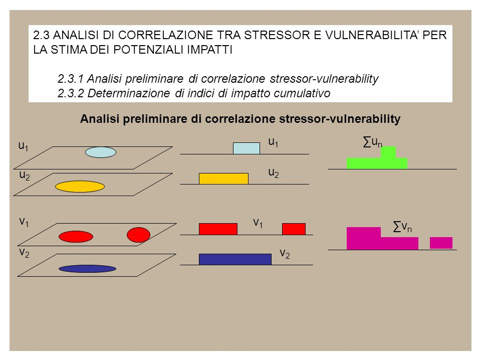 Analisi preliminare di correlazione stressor-vulnerability
