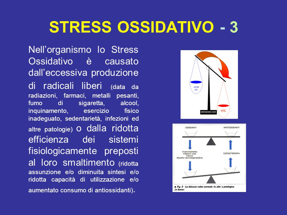 STRESS OSSIDATIVO - 3