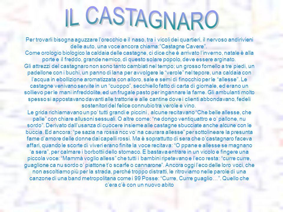 IL CASTAGNARO