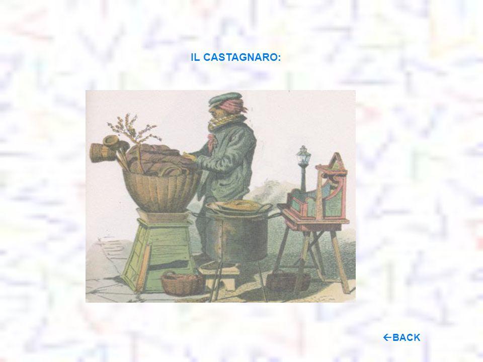 IL CASTAGNARO: BACK